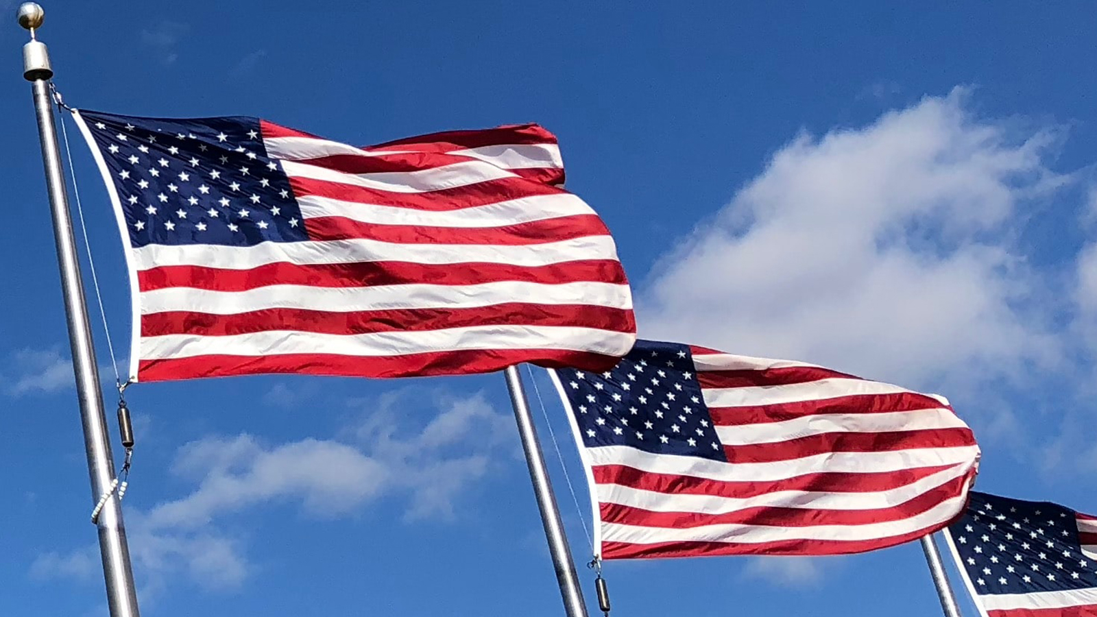Flag Poles with American Flag